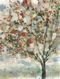 árbol by aerostato