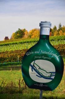 """Boxbeutel """"Wein- und Naturlehrpfad Kitzingen"""" mit Weinhang von Heiko Esch"""