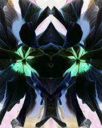 Schwarzer Hibiscus 3 by Tatjana Wicke
