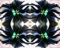 Schwarzer Hibiscus 1 by Tatjana Wicke