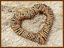 Rustic Love by Clare Bevan