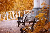 Bench in Autumn Park von cinema4design
