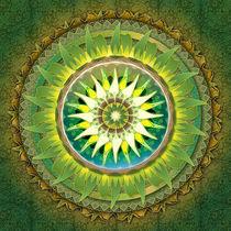 Mandala Green von Bedros Awak