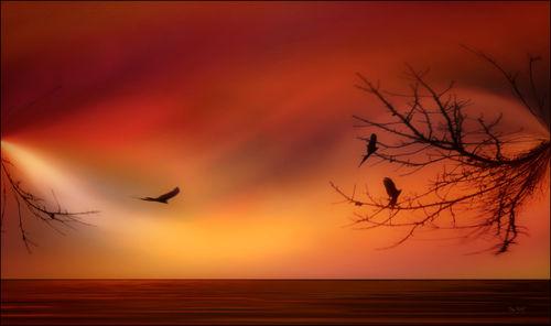 Sky-flight