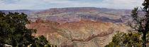 Grand Canyon, South Rim 1 von Daniel Troy