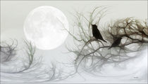 JACKDAWS IN THE MOONLIGHT von tomyork