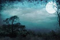 Valley Under Moonlight von Peter  Awax
