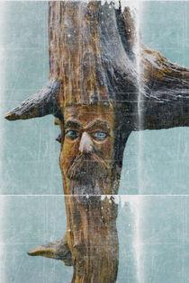 Wald Einwohner by Wladimir Zarew