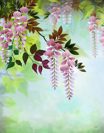Spring Wisteria by Peter  Awax