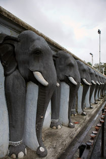 Elephant statues by Karen Cowled