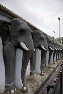 Elephant statues von Karen Cowled