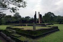 Anuradhapura von Karen Cowled