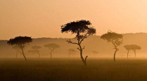 Kenya-dot-20050403-dot-img-1131-mara-16b-240ppi