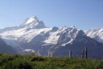 Berner Oberland von Bruno Schmidiger