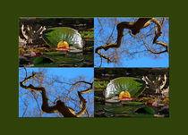 """Viererbild """"Herbstmetamorphose"""" pp von lisa-glueck"""