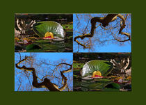 "Viererbild ""Herbstmetamorphose"" pp by lisa-glueck"