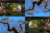 """Viererbild """"Herbstmetamophose"""" von lisa-glueck"""