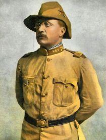 Theodore Roosevelt Aa A Rough Rider von Vincent Monozlay