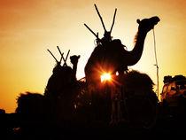 Afrika von Frank Daske