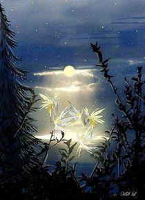 Tanz der Elfen am See. von Heidi Schmitt-Lermann