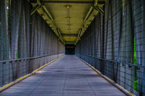 Grosshesseloher Brücke I by gchoops