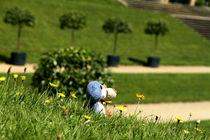 zwei Großnasen im Park by Olga Sander