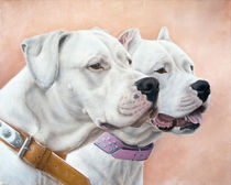 Dogs von Tobiasz Stefaniak
