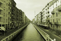 milano's canals by peter collins