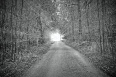 Waldweg-002-6000d