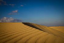 Dünenlandschaft auf Fuerteventura von Johannes Gregor