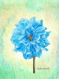 The Blue Dahlia by Linda Ginn