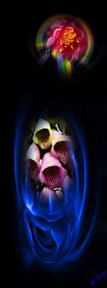 Blütenträume 18 by Walter Zettl
