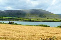 Irische Landschaft im County Clare von gscheffbuch