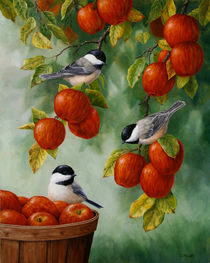 Apple Harvest Chickadees by Crista Forest