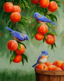 Bluebirds and Peaches von Crista Forest