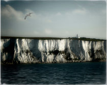 White Cliffs of Dover by Edmund Nagele F.R.P.S.