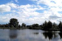 See im Gartenpark Rietberg von Joachim P. Pudrel