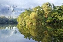 Still ruht der See von Bernhard Kosten