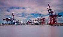 Waltershofer Hafen II by photoart-hartmann