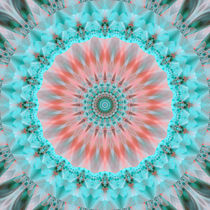 Mandala zarte Seele von Christine Bässler