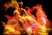 Flamenco 3 von Gabi Hampe Brigitte Dürr