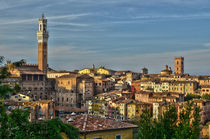 Siena - Toskana von Peter Bergmann