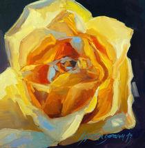Rose von Silvia  Springorum