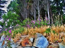Purple Wildflowers & Wild Grasses  by Rick Todaro
