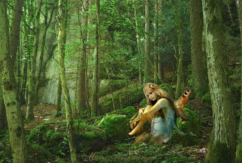 Fairyland-1