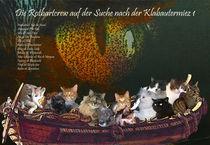 Die Suche nach der Klabautermiez 1 von Wolfgang Schwerdt