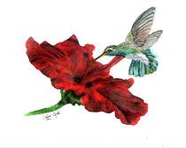 Hungry Hummingbird von Linda Ginn
