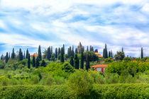 Toskanische Landschaft in Sirmione von Gina Koch