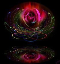Blütenträume 19 Rose by Walter Zettl