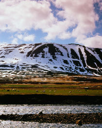 Skagafjordur